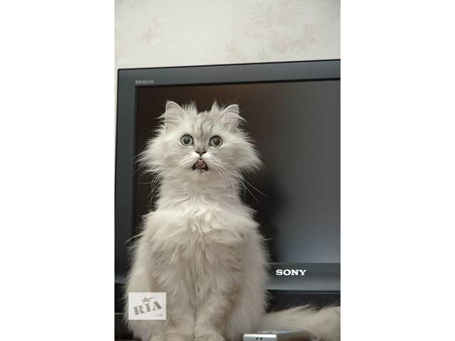 купить бу ремонт телевизоров с выездом к клиенту в Бердичеве