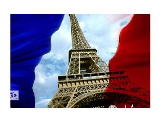 купить бу Репетитор французского языка в Павлограде