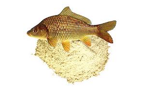 Рыбная мука (производитель)