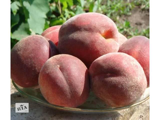 купить бу Саженцы Яблони,черешни,абрикоса,сливыперсика,малины,смородины,ореха,клубника,розы. в Харькове