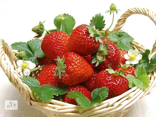 продам Сбор лесных ягод и клубники  Финляндия бу  в Украине