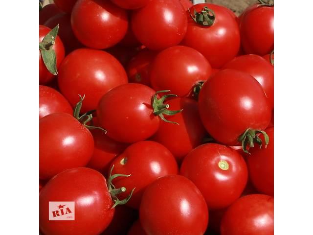 Семена томата Солероссо F1  Упаковка 1000 семян.- объявление о продаже  в Харькове