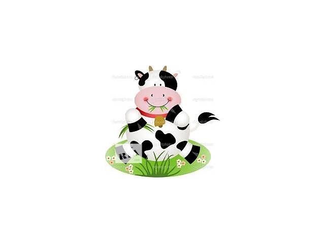 Срочно продам корову- объявление о продаже  в Лозовой