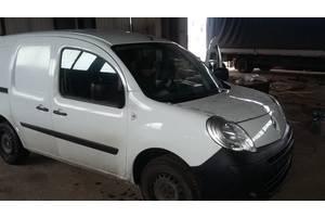 Стекла двери Renault Kangoo