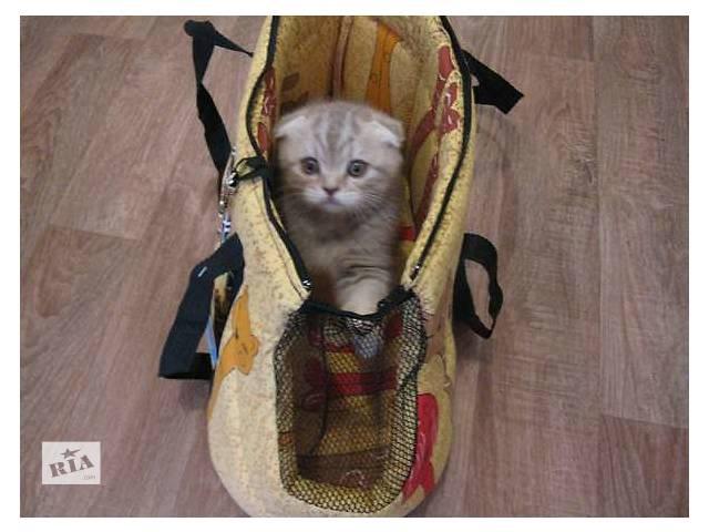 бу Сумка - переноска для кошек, котят, собак, щенков, кроликов, енотов, ёжиков в Киеве