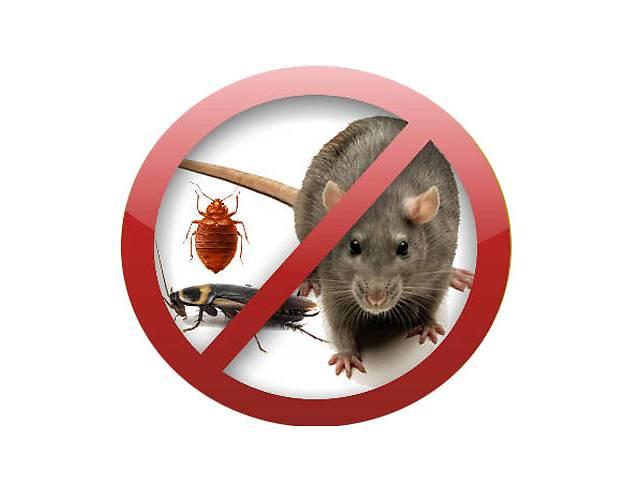 Тараканы, клопы, блохи в Днепродзержинске уничтожение- объявление о продаже  в Днепре (Днепропетровск)