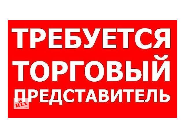 бу Торговый представитель с авто в Хмельницкой области