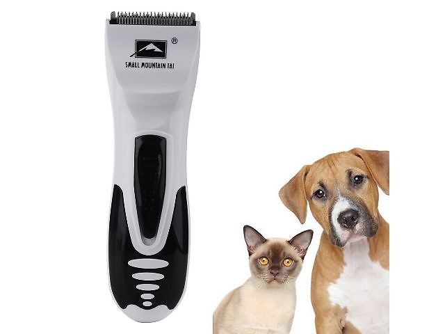 cat products online india