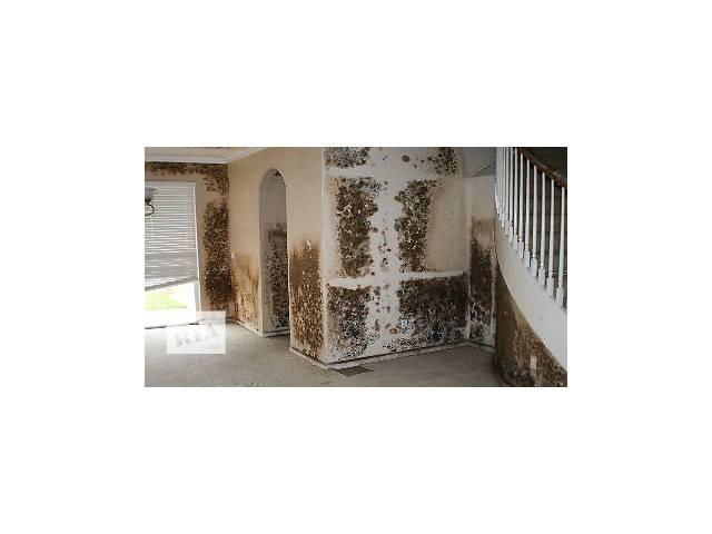 продам Удаление грибка и плесини на стенах и потолке с гарантией  бу  в Украине