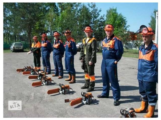 продам удаление,спиливание,срезание,срезка,спил,корчевание,вырубка деревьев. бу в Киевской области