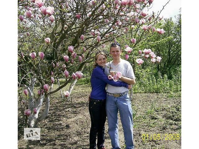 продам Уход за садовыми и дачными участками. бу в Виннице