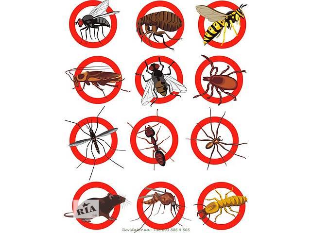бу Уничтожение тараканов, клопов,мух, ос, шершней, крыс, мышей,  кротов, бактерий в Полтавской области