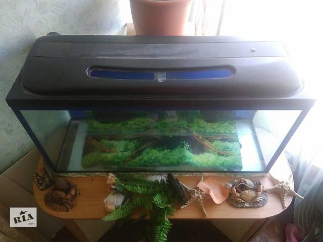 продам В Киеве Дарница Срочно продам аквариум бу в Макарове