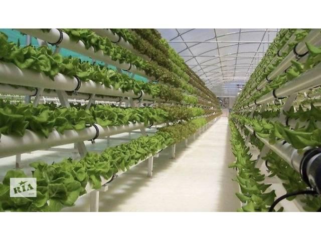 Данія,Тепличні роботи (квіти/листя салатів)- объявление о продаже   в Україні