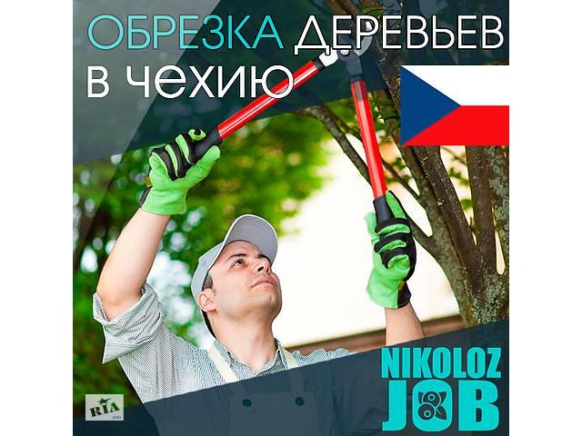 продам Работа в Европе для мужчин и женщин. Работа в Чехии на фермах бу в Харькове