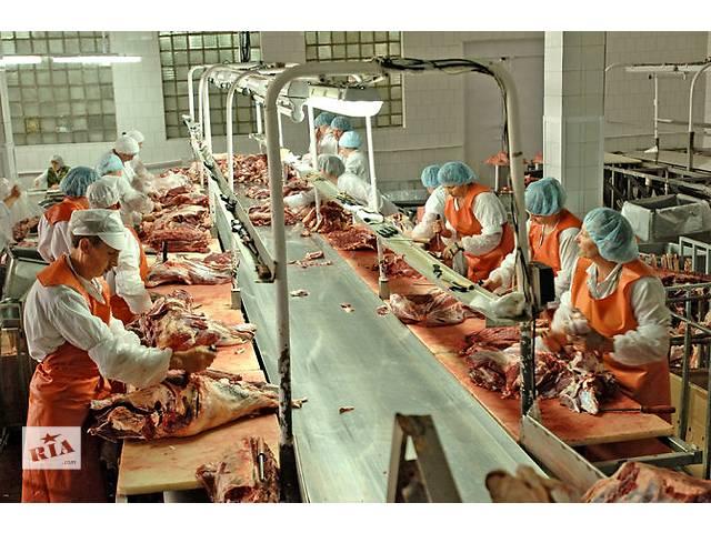 купить бу Вакансія на м'ясну фабрику  в Украине