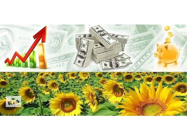 Инвестиции в действующий бизнес под высокий и стабильный процент.- объявление о продаже   в Украине