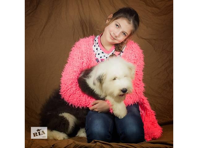 продам Великолепная девочка бобтейл! бу в Киеве