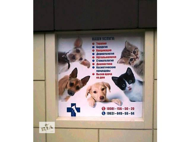 Ветеринарная клиника Доктор Г.А.В.- объявление о продаже  в Донецке