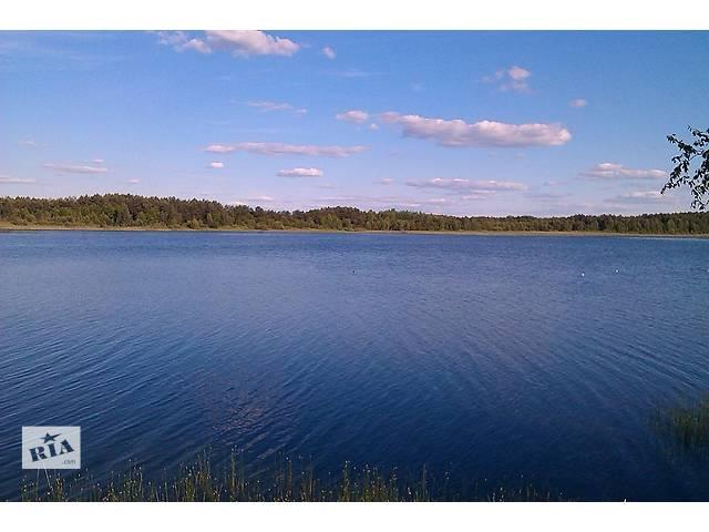 купить бу Отдых на озере, озеро Луки. Волынь.  в Украине