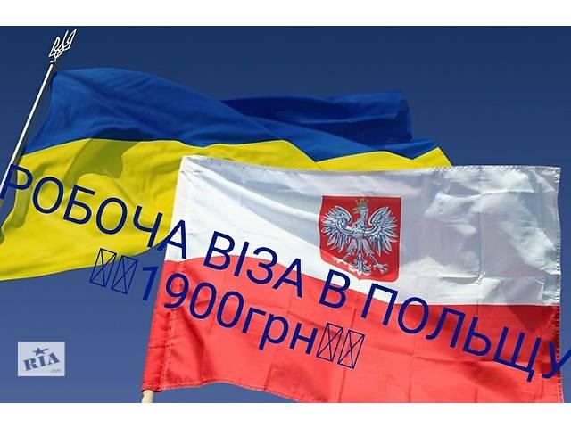 бу Візи в Польшу дешево  в Украине