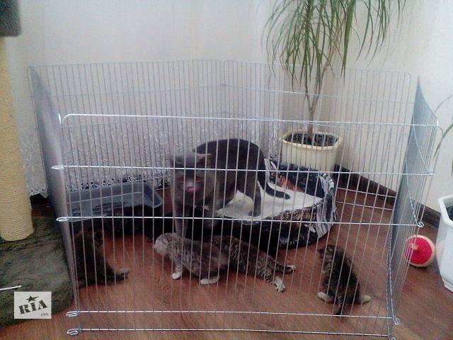 бу Вольер для собак, щенков, котят, кроликов диаметр 170 см (продажа/аренда) в Киеве