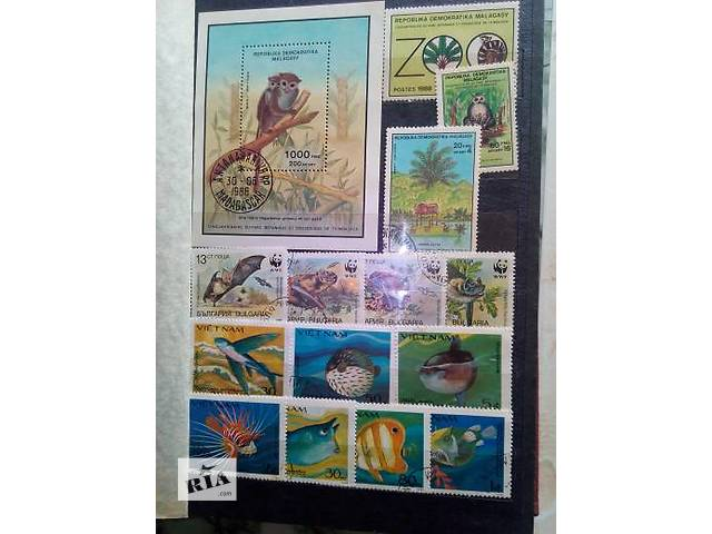 Иностранная флора, фауна- объявление о продаже  в Мариуполе