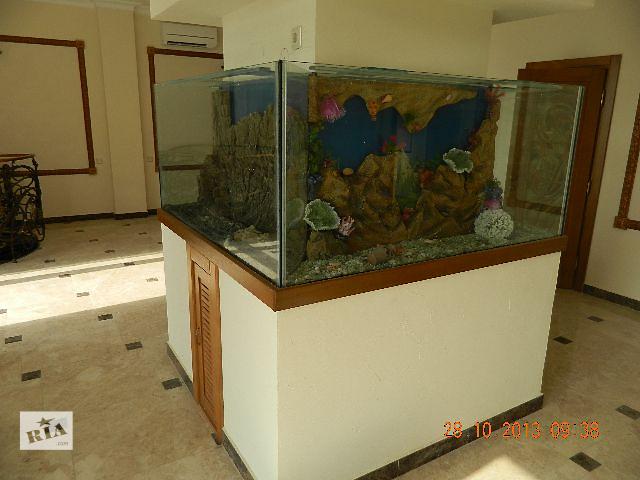 купить бу Интернет магазин аквариумов АКВАТОРИЯ (aqva-toriya.ru) в Севастополе