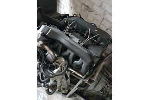 Блоки двигателя Ford Transit