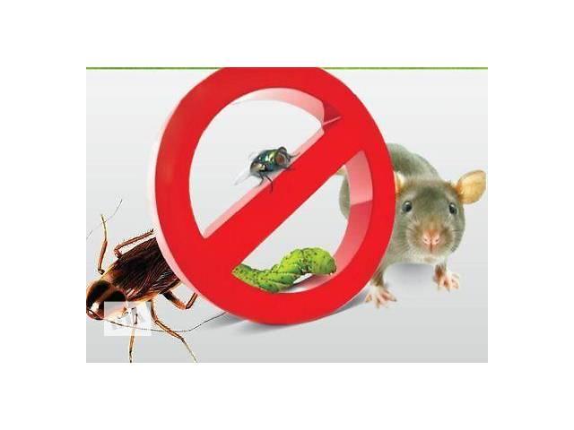 Уничтожение вредных насекомых тараканов, пищевой моли, клопов, блох, крыс- объявление о продаже  в Виннице