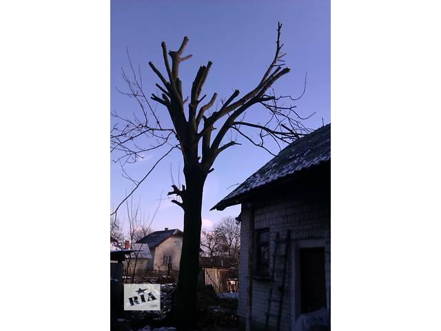 продам Срезка деревьев методом промальпінізму бу в Львовской области