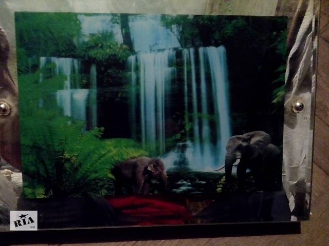 бу Звуки тропического леса и пейзаж в коробке  в Одессе