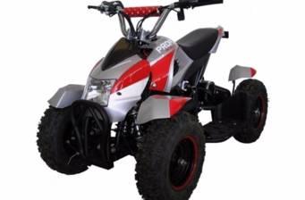E - ATV Profi 500W 2018