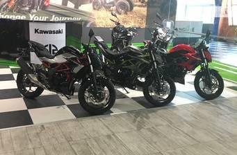 Kawasaki Z 250SL 2017