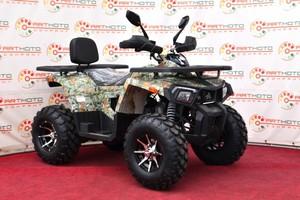 Comman ATV Shark 200