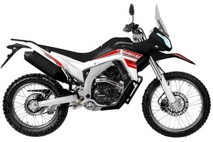 Loncin LX 250GY-3G DS2