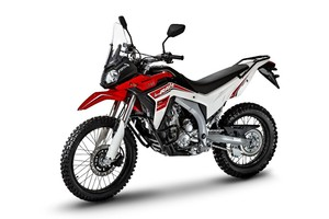 Loncin LX 300GY-A DS2 Pro