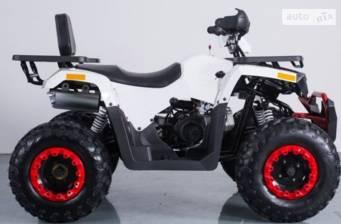 Comman Scorpion 200 2019