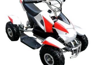 E - ATV Profi 500B 2018