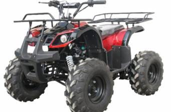 Hamer X X110 New 2016