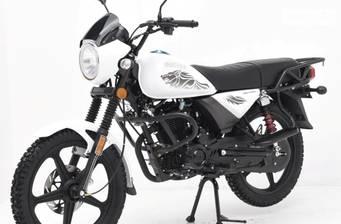 Hunter Wolf N200 2020
