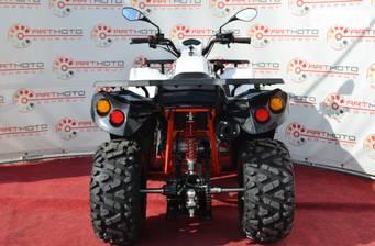 Kayo Bull 2021