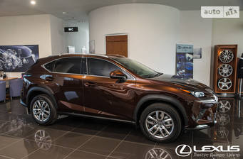 Lexus NX 2019 Business
