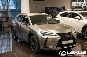 Lexus UX 2019 Business