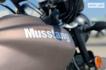 Musstang Dingo 2020 base