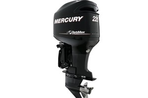 Mercury 225 225 XL Optimax