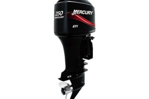 Mercury 250 250 XXL OptiMax