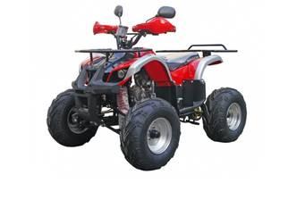 Hammer J-Rider 2021