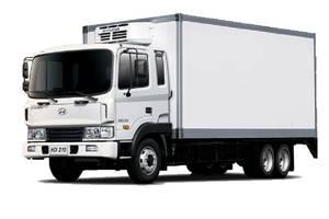 Hyundai hd-210 1 поколение Промтоварный