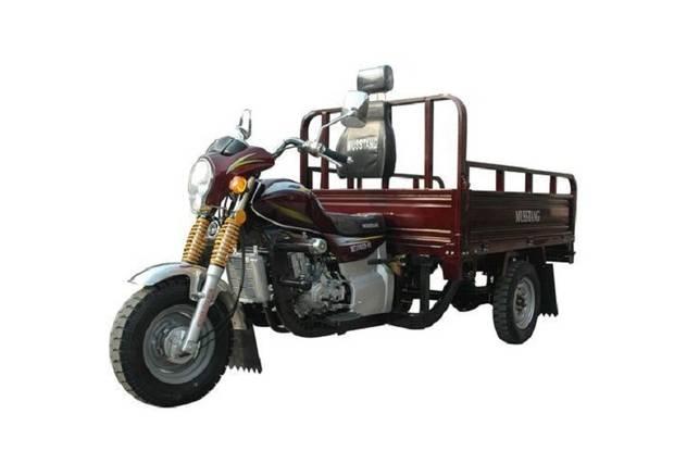 Musstang MT200ZH-4V 1-е поколение Трицикл